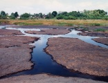 Water-filled cracks at swamp edge